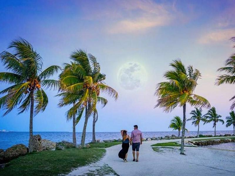 Matheson Hammock Park Beach in Coral Gables, Miami, FL