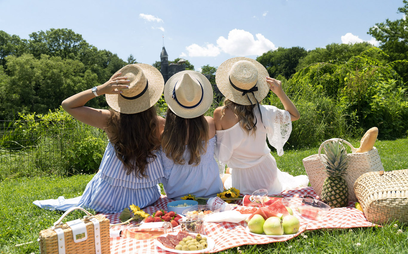 Picnic in the Central Park in NYC
