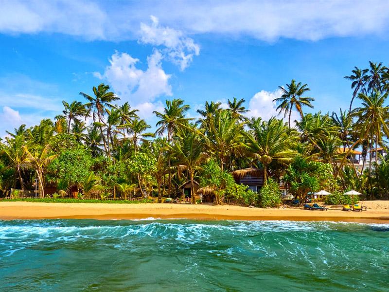 Place to Visit in Bentota, Sri Lanka