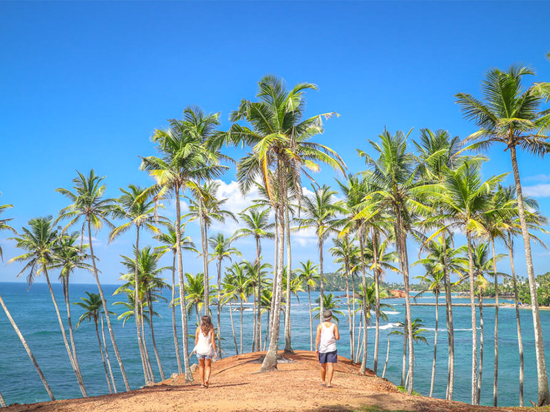 Place to Visit in Mirissa, Sri Lanka
