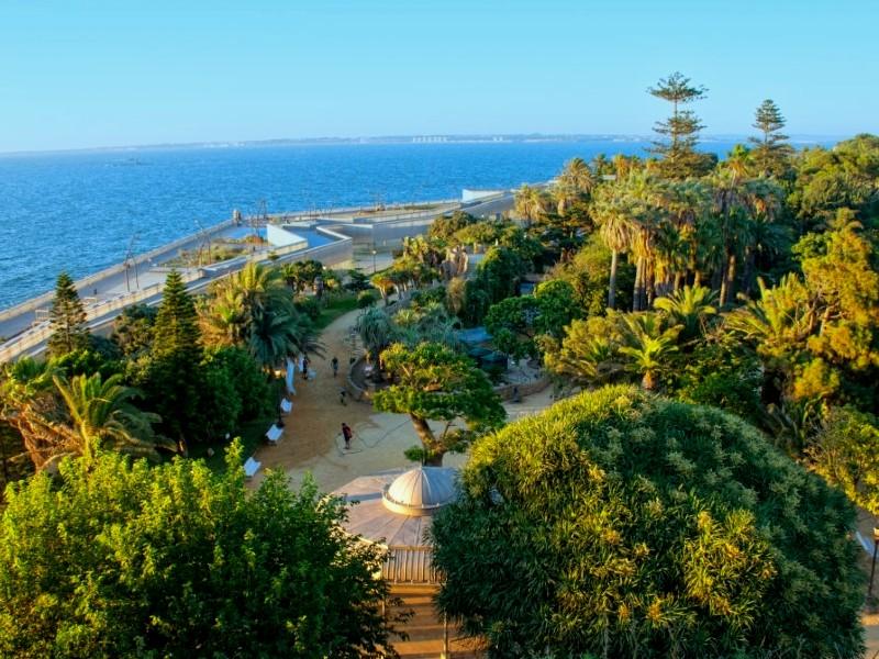 Visit Santa Barbara Botanic Garden